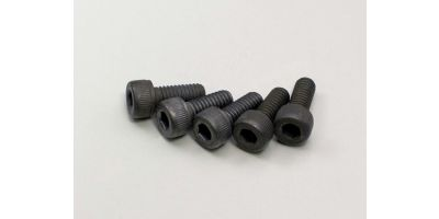 Cap Screw(M4x10/5pcs) 1-S24010