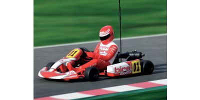 GP 2WD RACING KART BIREL R31-SE Readyset  31315T1