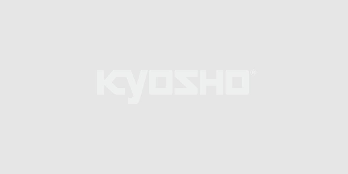 Toyota TRUENO AE86 GTV White Body set MZN204
