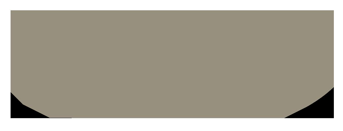 NEW 4RUNNER 4WD
